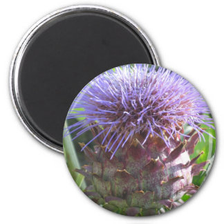 Thistle Circle Magnet