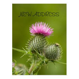 Thistle Flower New Address Card