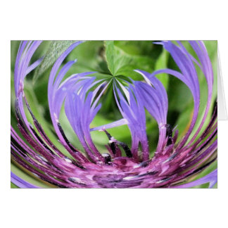 Thistle Greeting Card (blank)