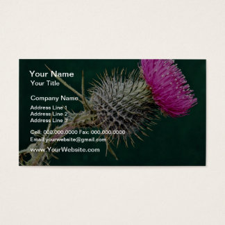 Thistle head  flowers business card