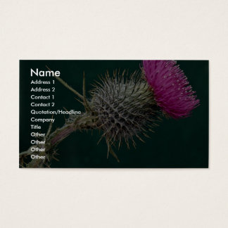 Thistle head pink flower business card