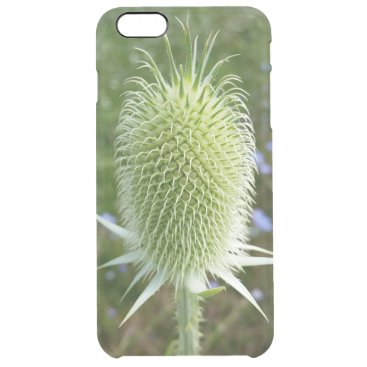 Thistle in the summer sun clear iPhone 6 plus case