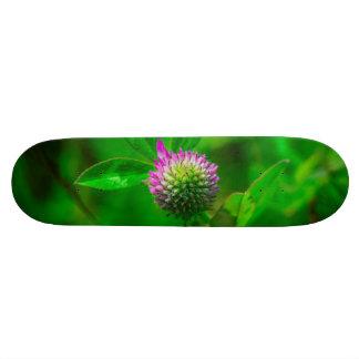 Thistle macro skate board deck