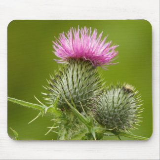 Thistle Mouse Mat Mouse Pad