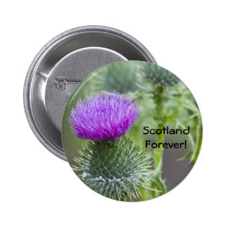 Thistle Pinback Button