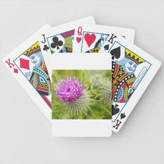Thistle Card Decks
