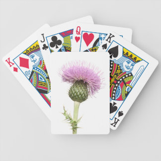 Thistle Deck Of Cards