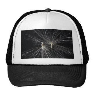 Thistle Seed Trucker Hat