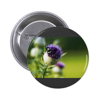 Thistle With A Small Bumblebee Pin