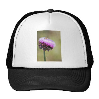 """""""Thistle with Bee""""  collection Trucker Hat"""