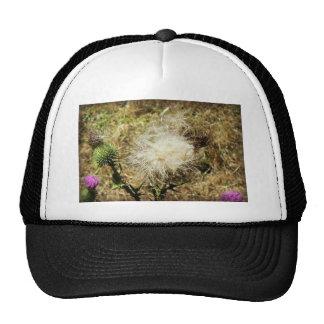 Thistledown Flower Trucker Hat