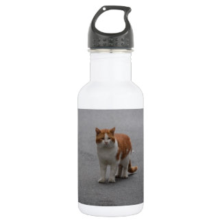 Thomas Ginger And White Cat Stainless Steel Water Bottle