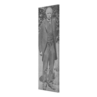 Thomas Hardy Lienzo Envuelto Para Galerias