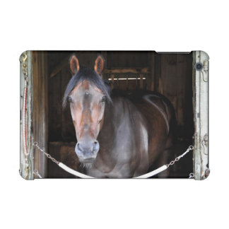 Thomas Hill by Scat Daddy iPad Mini Cases