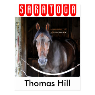 Thomas Hill by Scat Daddy Postcard