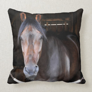 Thomas Hill by Scat Daddy Throw Pillows