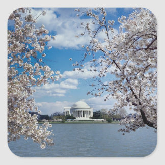 Thomas Jefferson Memorial with Cherry Blossoms Square Sticker