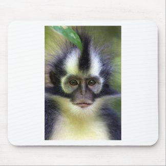 Thomas leaf monkey Sumatra Mouse Pad