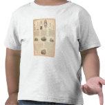 Thomas S Morton, fabricante Morris Camiseta