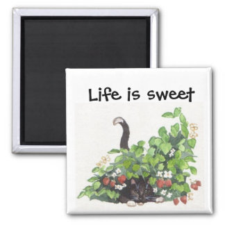 Thome in the strawberries magnet