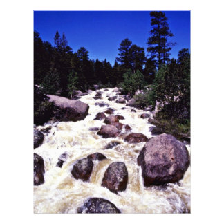 Thompson River - Rocky Mountain National Park Full Color Flyer