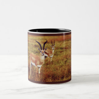 Thompsons Gazelle safari mugs & cups