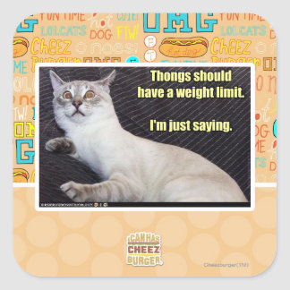 Thongs should have a weight limit. square stickers