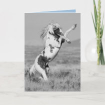 Thor Rears Wild Horse Greeting Card