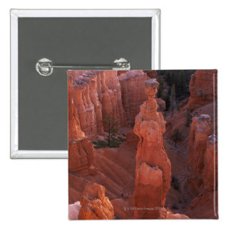 Thor s Hammer hoodoo on Navajo Trail Pinback Button
