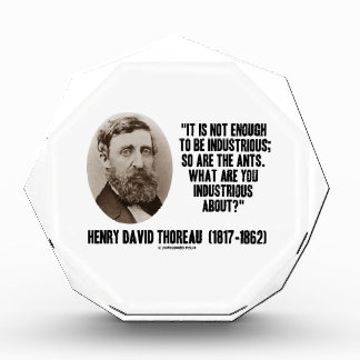 Thoreau Not Enough To Be Industrious So Are Ants Acrylic Award