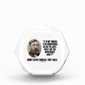 Thoreau Not Enough To Be Industrious So Are Ants Award