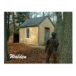 Thoreau's statue and cabin postcard