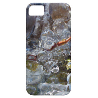 Thorn in Round Bubbles of Ice from Freezing Rain iPhone SE/5/5s Case
