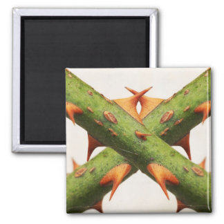 Thorns Cross 2 Inch Square Magnet