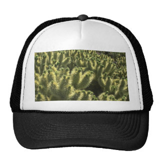 Thorny  Beauty Trucker Hat