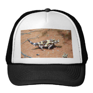 Thorny Devil Lizard Trucker Hats