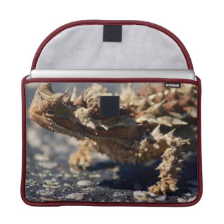 "Thorny Devil Lizard, Outback Australia, 13"" Photo Sleeve For MacBooks"