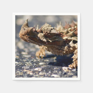 Thorny Devil Lizard, Outback Australia, Cocktail Napkin