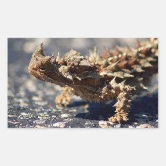Thorny Devil Lizard, Outback Australia, Photo Rectangular Sticker