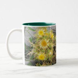 Thorny Mediterranean Flower Two-Tone Coffee Mug