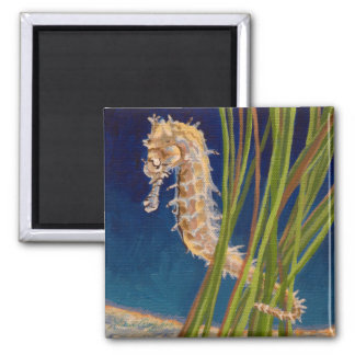 Thorny Seahorse Magnet