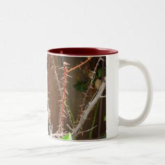 Thorny Times Mug