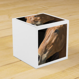 thoroughbred-7 party favor boxes