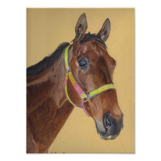Thoroughbred Art Print Posters