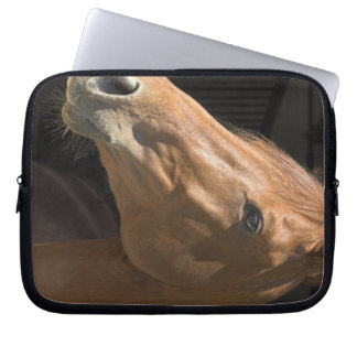 Thoroughbred  Electronics Bag Computer Sleeves