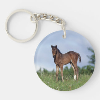 Thoroughbred Foal Standing in the Grass Keychain