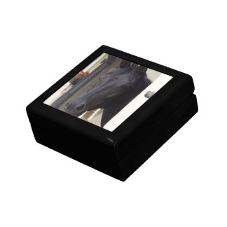 Thoroughbred Friesian Cross Gift Box