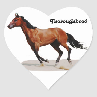 Thoroughbred galloping Stickers