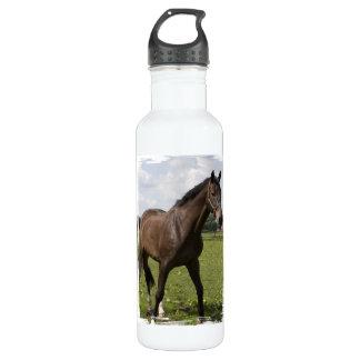 Thoroughbred Horse 24oz Water Bottle