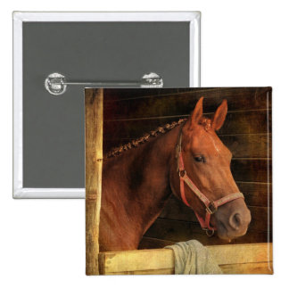 Thoroughbred Horse Pinback Buttons